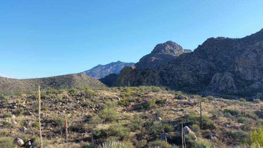 first-trail-run-catalina-state-park